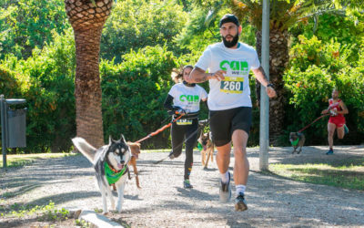 Can We Run Alicante: la carrera solidaria para disfrutar con tu perro